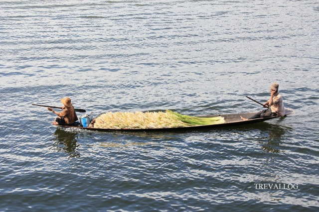 Boat as transportation for agriculture, Inle Lake, Myanmar