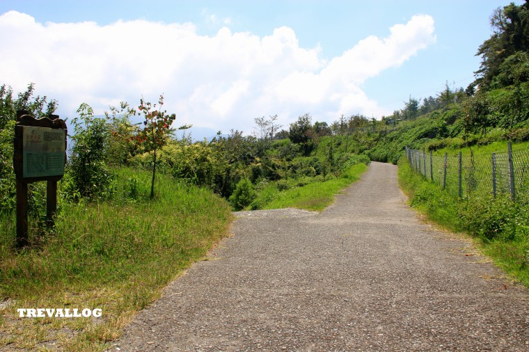 Trail No 3 (Tree Plantation), Cingjing, Taiwan