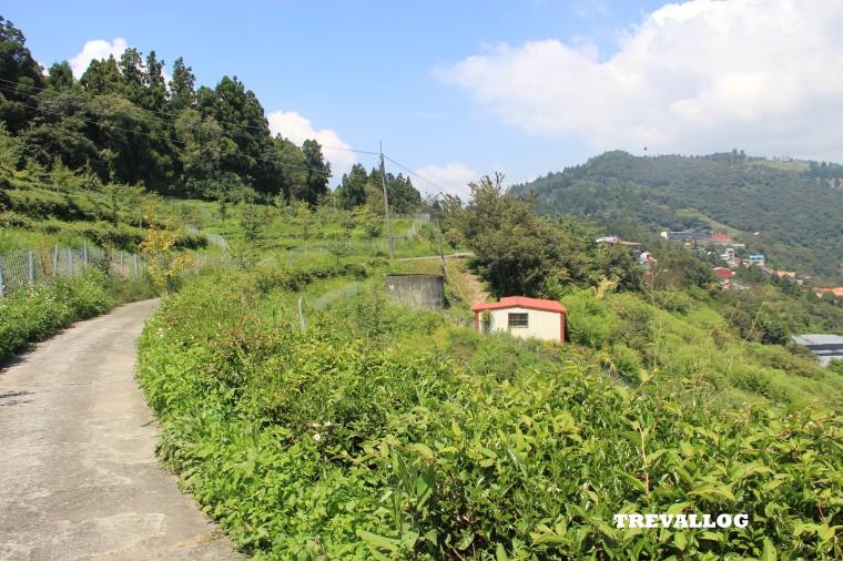 Trail at Cingjing, Taiwan