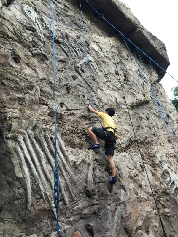 Amber Rock Climbing at Universal Studios Singapore