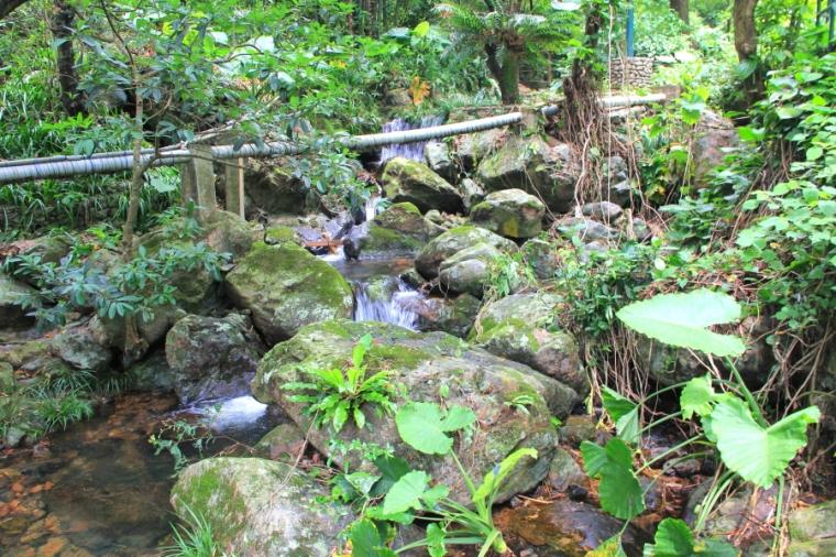 Small river at Kadoorie Farm & Botanic Garden, Hong Kong