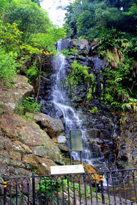 Lugard Falls at Peak Circle Walk, Hong Kong