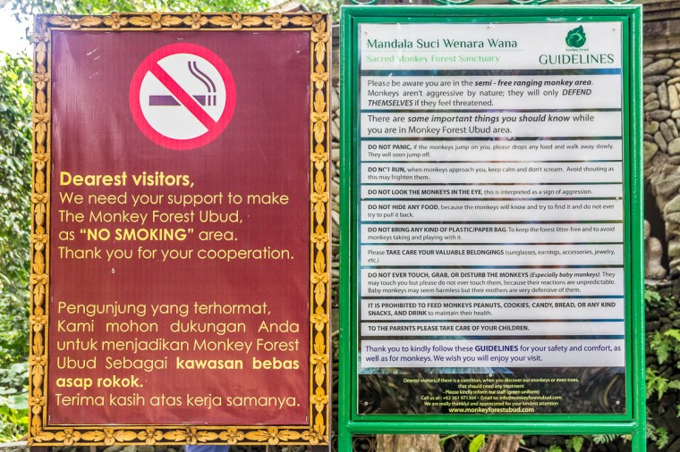 Guidelines for visiting Monkey Forest Ubud, Bali