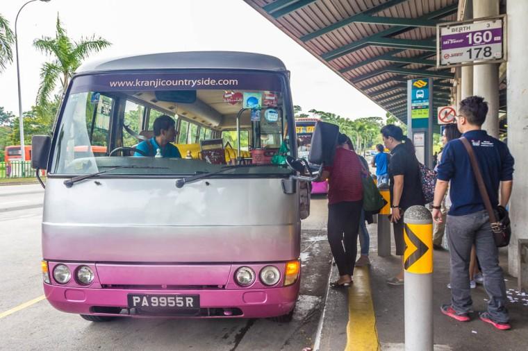 Kranji Countryside shuttle bus to Sungei Buloh Wetland Reserve, Singapore