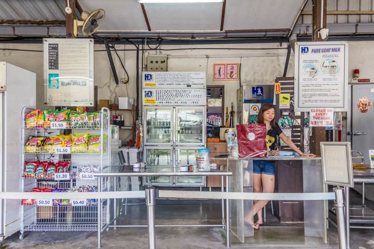 Buying Goat Milk at Hay Dairies Goat Farm, Kranji Countryside, Singapore