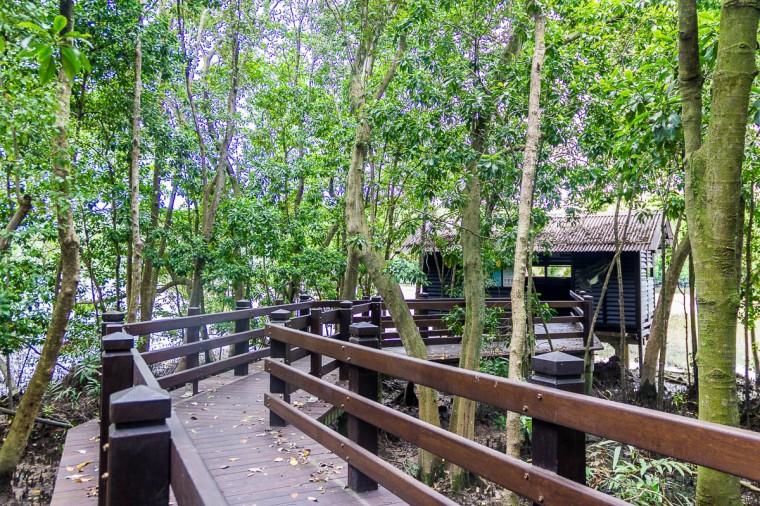 Hides at Migratory Bird Trail, Sungei Buloh Wetland Reserve, Kranji Countryside, Singapore