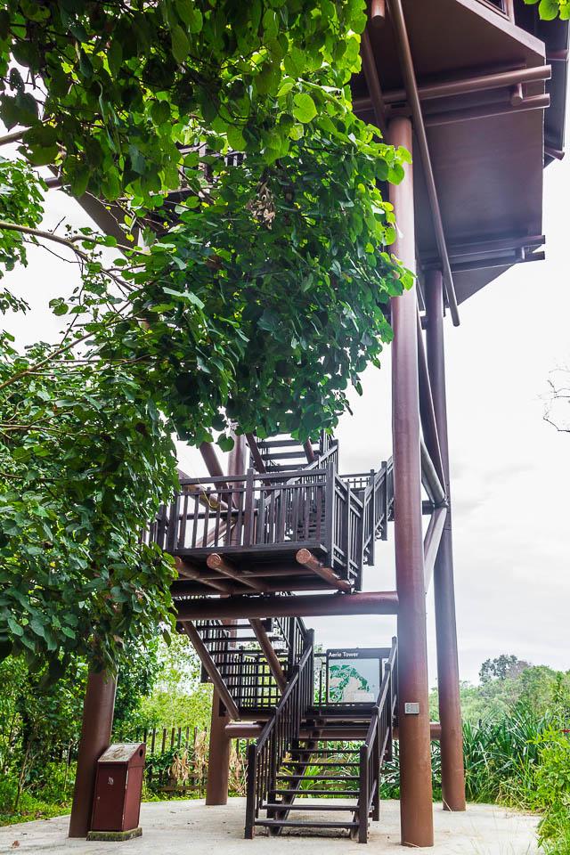 Aerie Tower at Migratory Bird Trail, Sungei Buloh Wetland Reserve, Kranji Countryside, Singapore