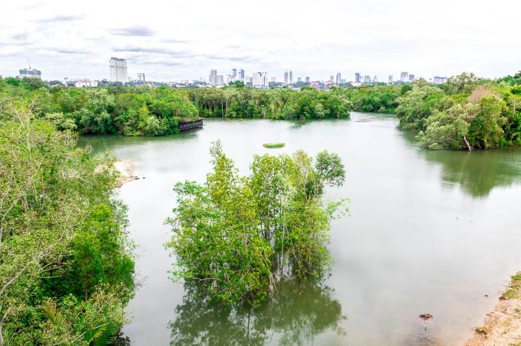 Johor Bahru skyline at Migratory Bird Trail, Sungei Buloh Wetland Reserve, Kranji Countryside, Singapore
